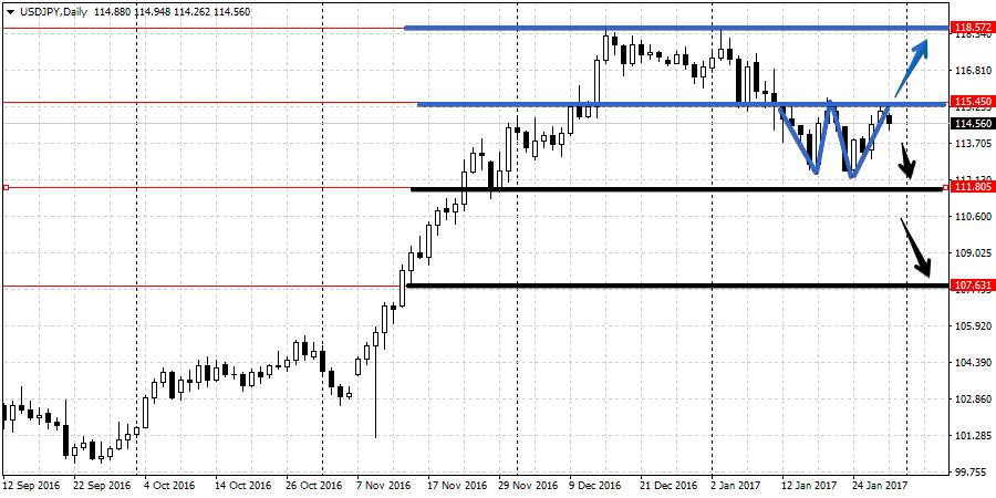Анализ валютной пары USD/JPY 30.01-3.02