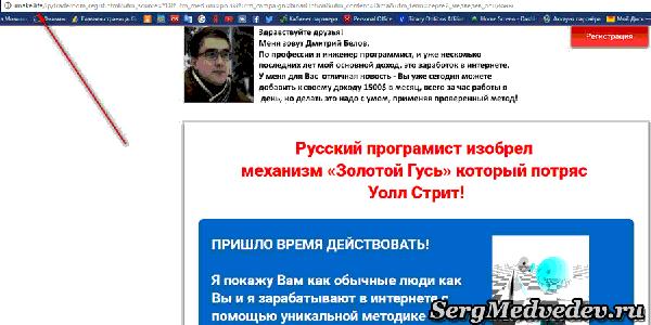Сергей Медведев и золотой гусь